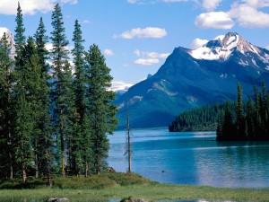Lac Maligne - Jasper National Park - Alberta